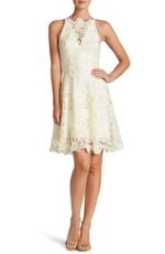 Dress The Population, Women's Dress The Population 'Hayden' Crochet Lace Fit & Flare Dress